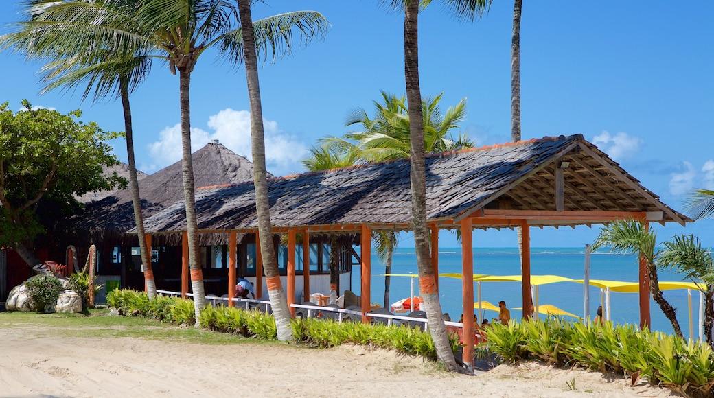Praia do Mutá mostrando cenas tropicais, um hotel de luxo ou resort e paisagens litorâneas