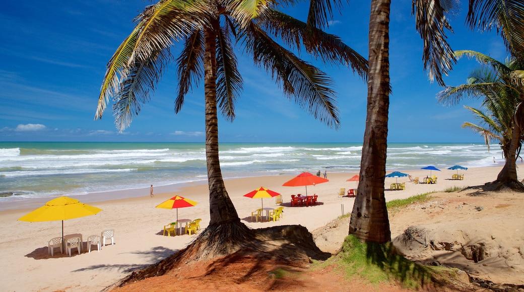 Flamengo Beach das einen allgemeine Küstenansicht, Strand und tropische Szenerien