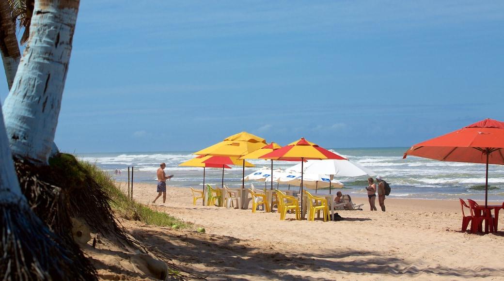 Flamengo Beach welches beinhaltet Strand und allgemeine Küstenansicht
