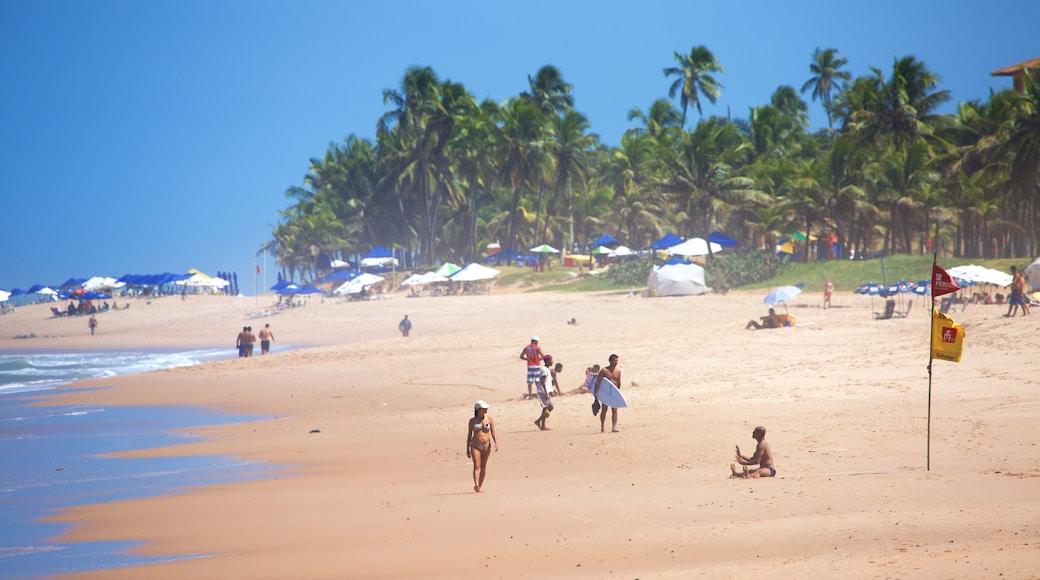 Flamengo Beach das einen allgemeine Küstenansicht, tropische Szenerien und Strand