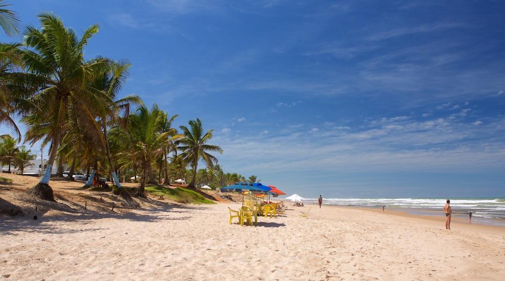 Flamengo Beach welches beinhaltet allgemeine Küstenansicht, Sandstrand und tropische Szenerien
