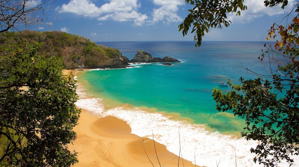 Strand von Sancho welches beinhaltet Strand, Wellen und allgemeine Küstenansicht