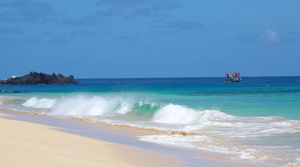 Strand von Cacimba do Padre welches beinhaltet Brandung, Sandstrand und allgemeine Küstenansicht