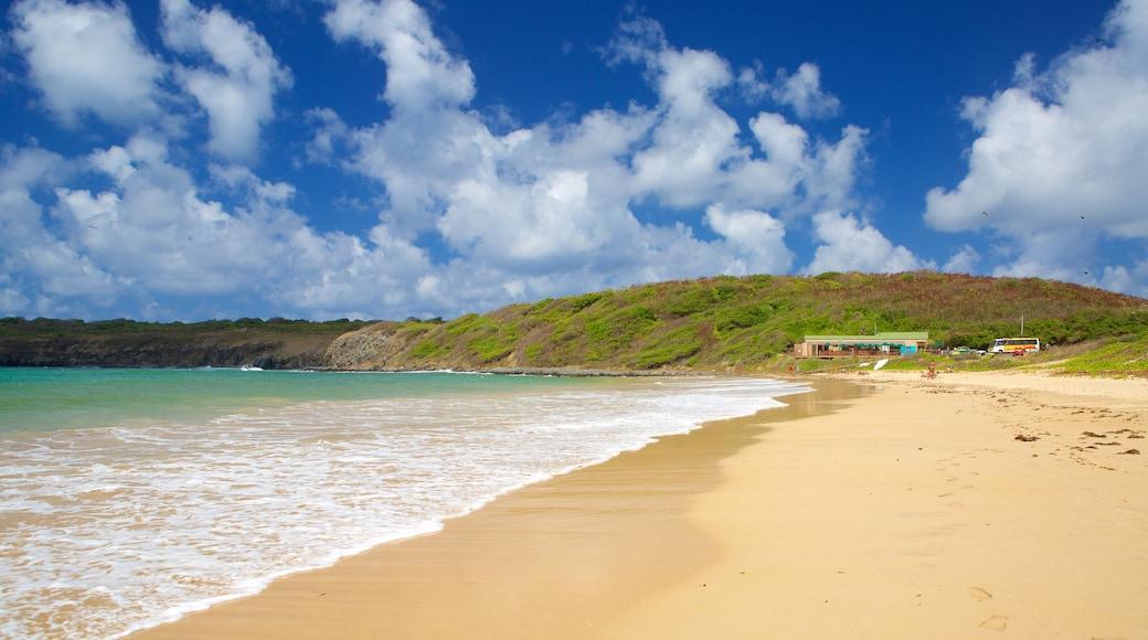 Sueste Beach which includes a beach and general coastal views