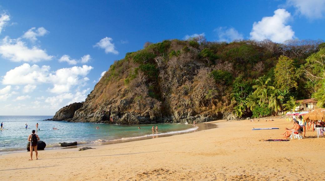 Praia do Cachorro das einen allgemeine Küstenansicht, tropische Szenerien und Berge