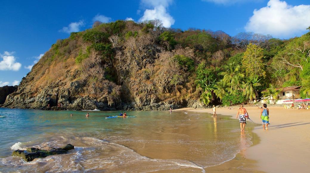 Praia do Cachorro welches beinhaltet tropische Szenerien, Strand und Kajak- oder Kanufahren