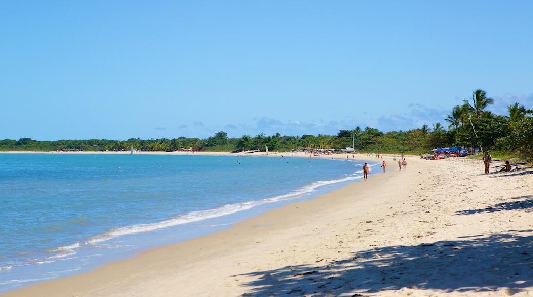 Praia do Mutá que inclui uma praia, paisagens litorâneas e cenas tropicais
