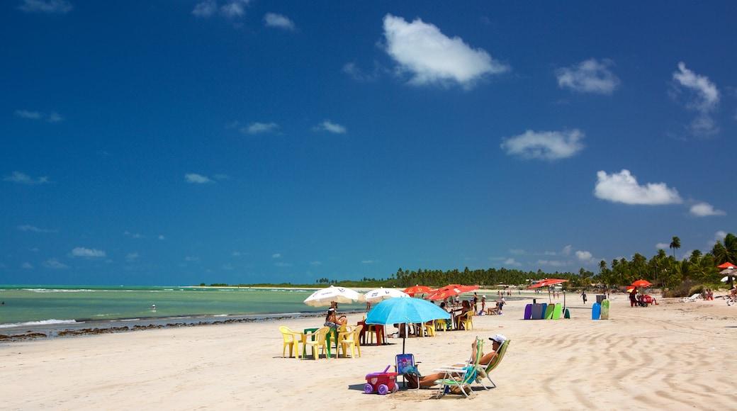 Paripueira Beach which includes general coastal views, a sandy beach and tropical scenes