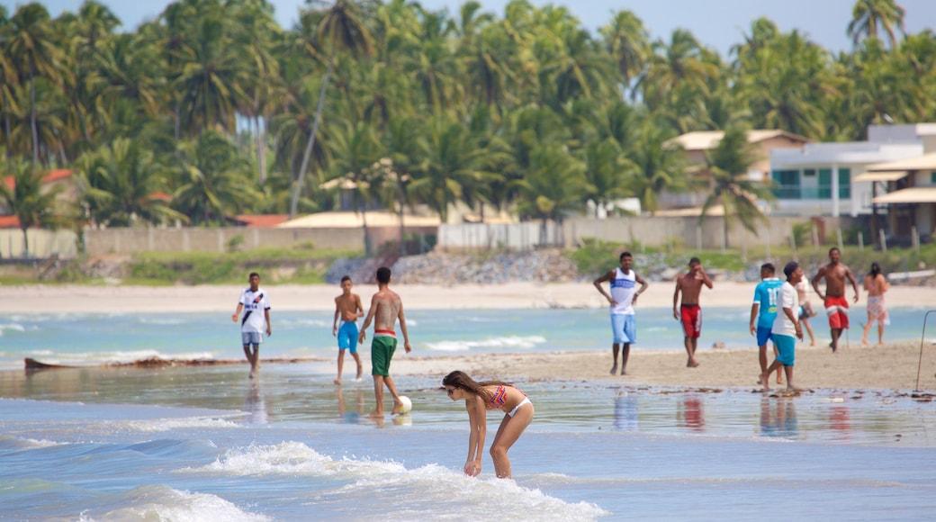 Paripueira Beach featuring tropical scenes, general coastal views and a sandy beach