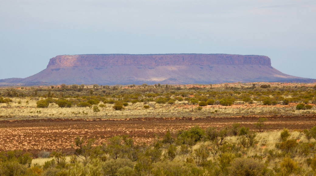 Red Centre showing tranquil scenes and desert views