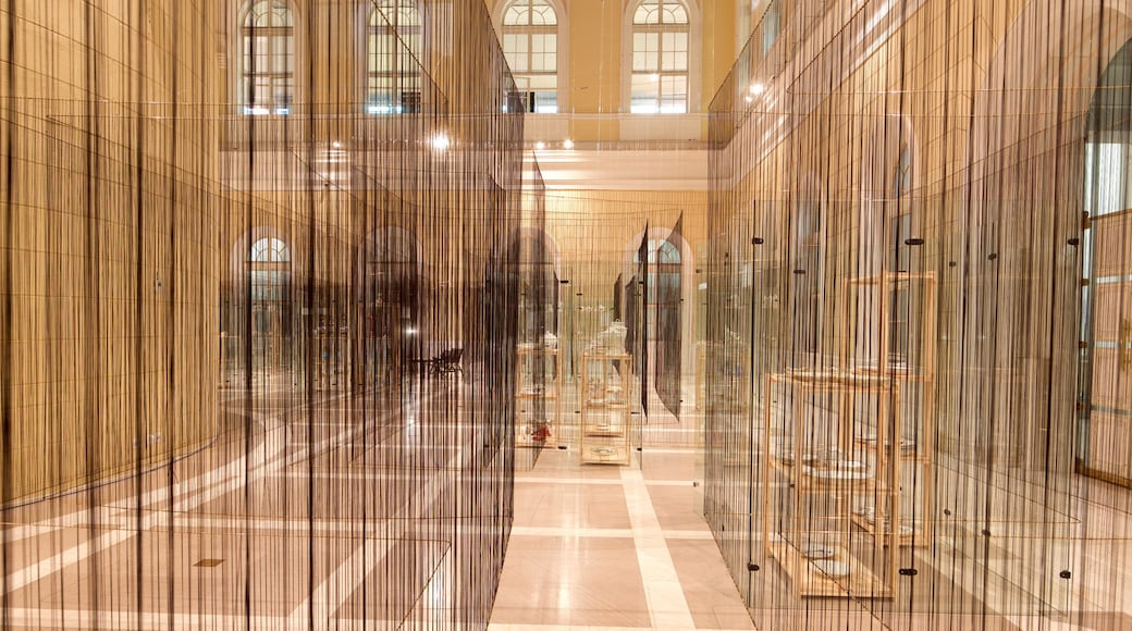 National Museum of Slovenia mit einem Kunst und Innenansichten