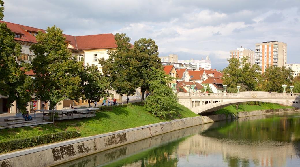 Lohikäärmesilta featuring kaupunki, joki tai puro ja silta