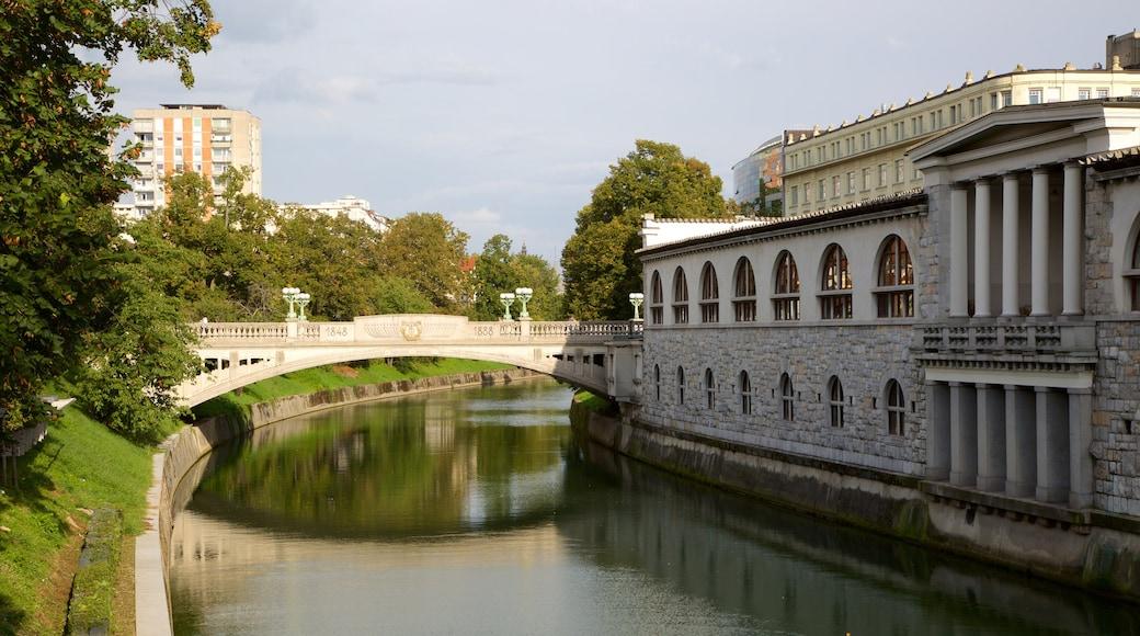 Lohikäärmesilta joka esittää silta ja joki tai puro
