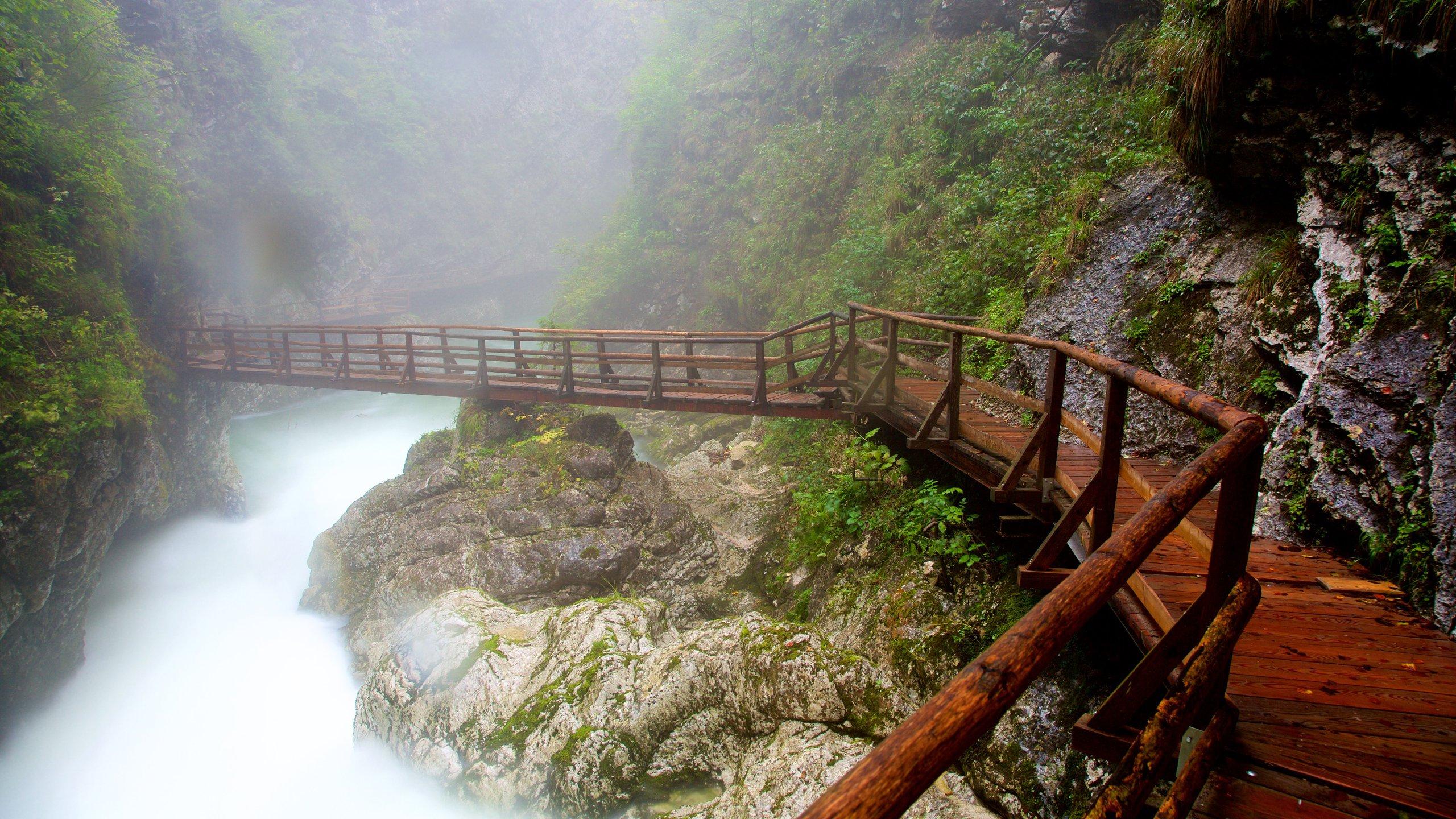 Vintgar Gorge, Gorje, Slovenia