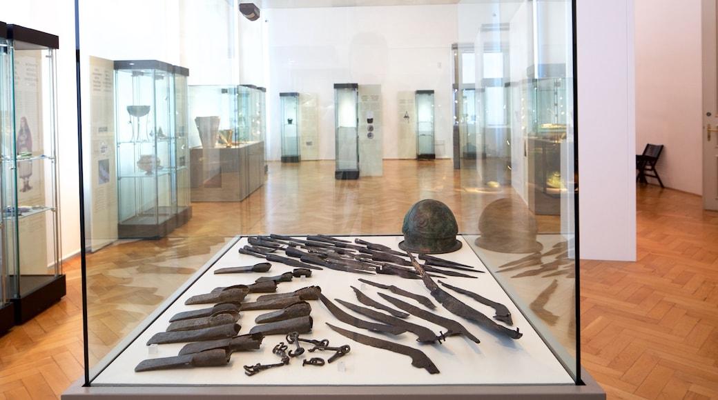 Museu Nacional da Eslovênia que inclui vistas internas