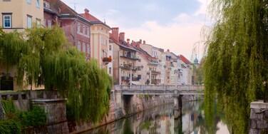 Ljubljana which includes a bridge and a river or creek