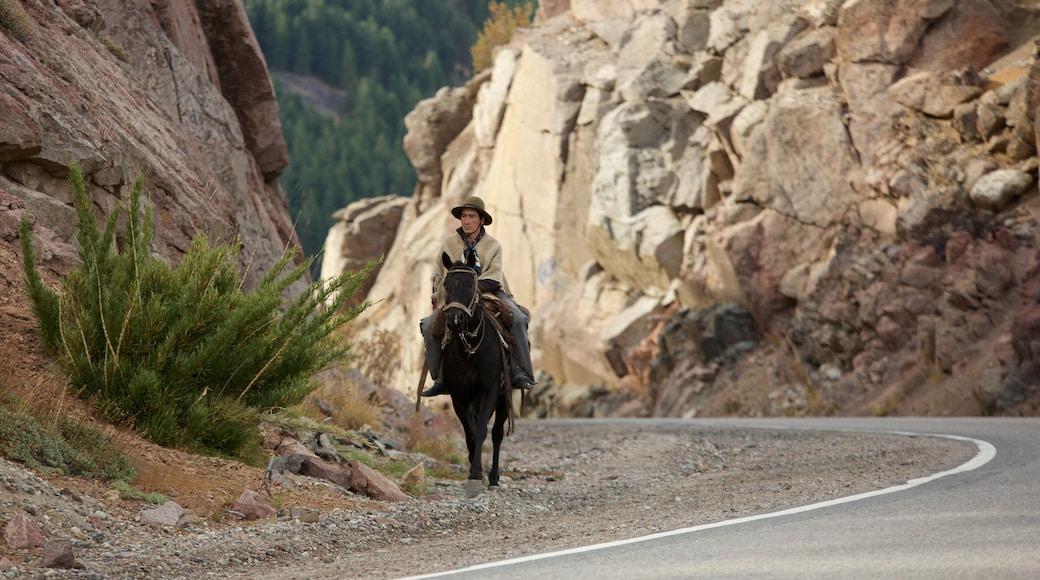 Patagonien mit einem Reiten und ruhige Szenerie sowie einzelner Mann