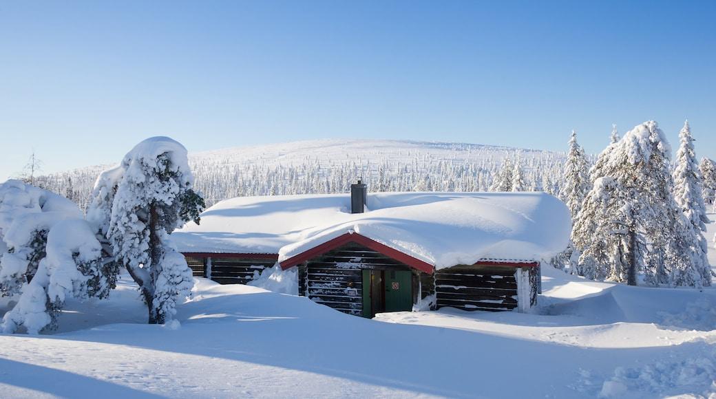 Sälen presenterar snö