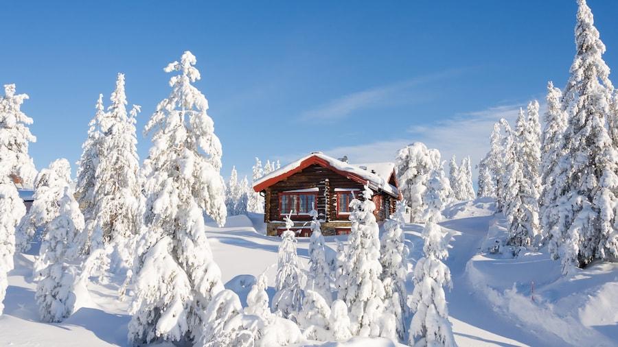 Sälen som visar snö
