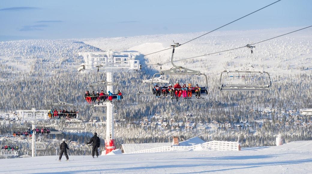 Sälen presenterar en gondola och snö