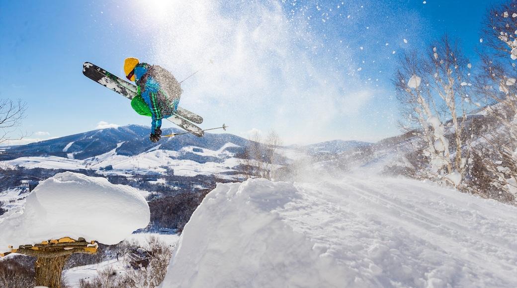 Rusutsu Resort featuring snow and snow skiing