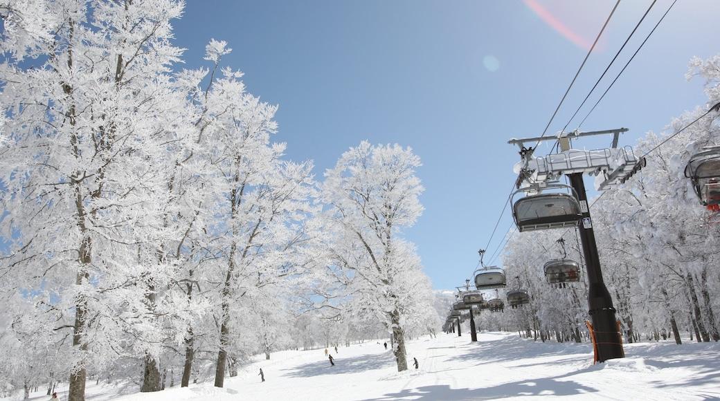 Nozawa Onsen Snow Resort featuring a gondola and snow