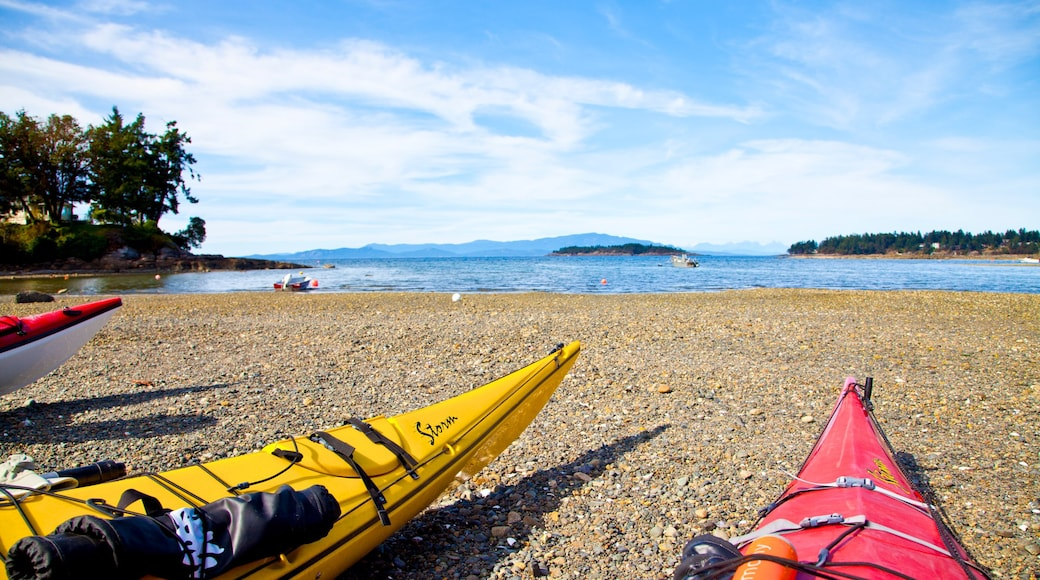 Parksville showing kayaking or canoeing and a pebble beach