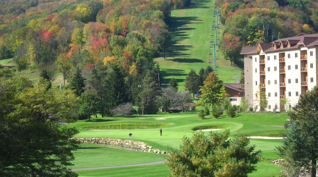 Ellicottville which includes golf and a luxury hotel or resort