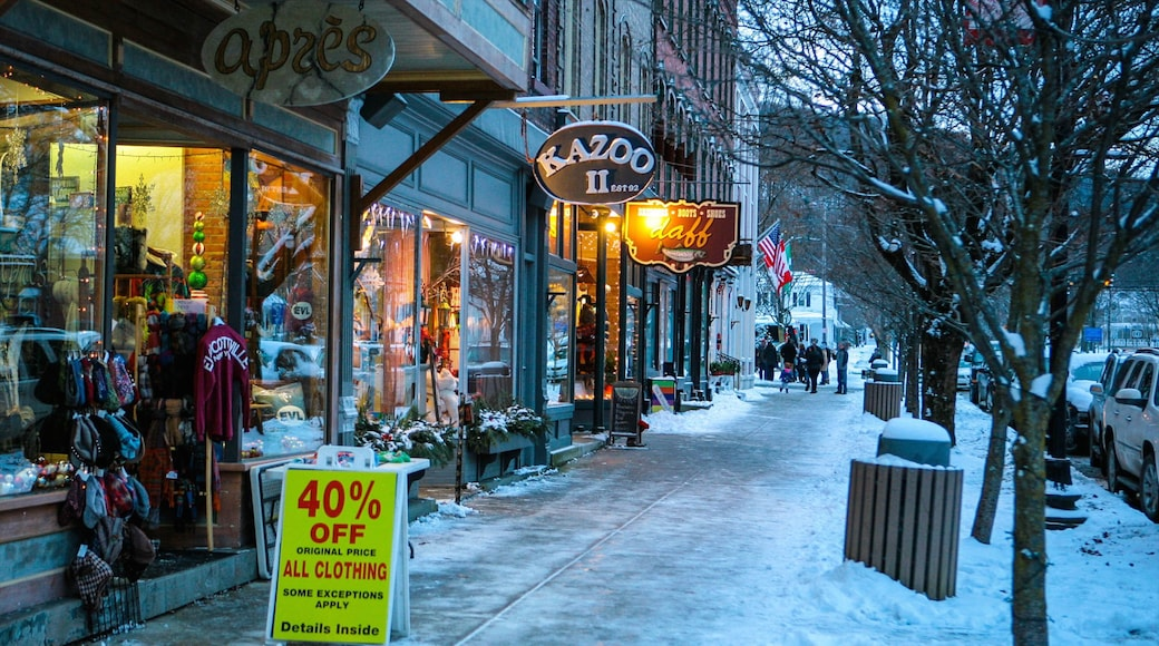 Ellicottville showing street scenes, night scenes and signage