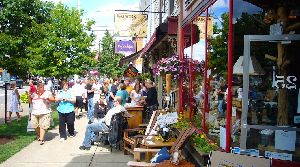 Ellicottville featuring street scenes as well as a large group of people