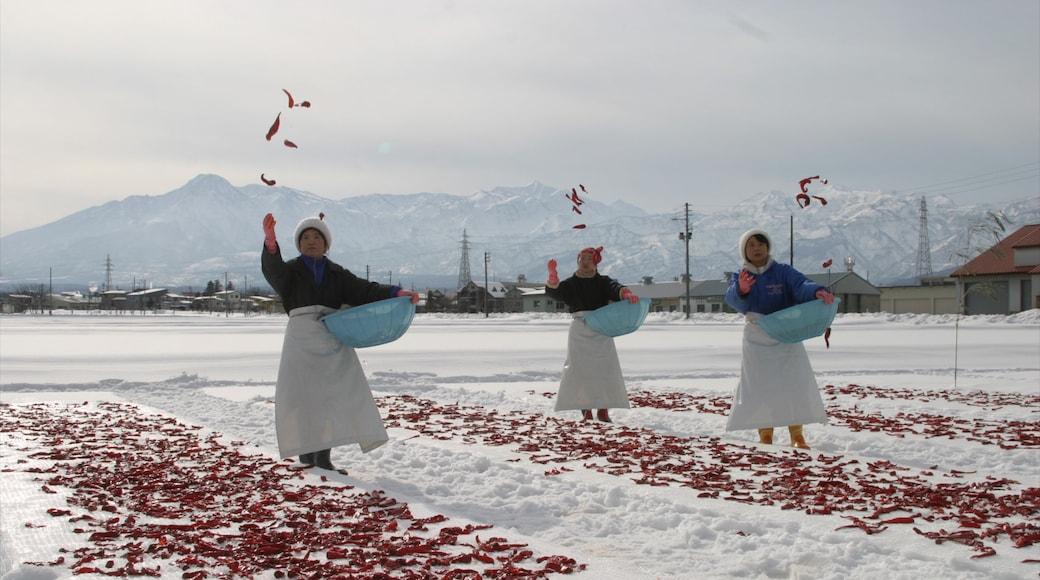 Myoko แสดง เมืองหรือหมู่บ้านเล็กๆ, ศิลปะการแสดง และ หิมะ