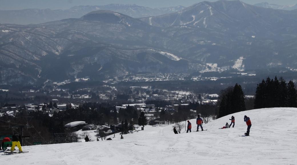 Myoko แสดง ภูเขา, สโนวบอร์ด และ หิมะ