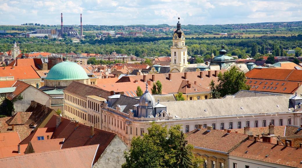 Pecsin katedraali joka esittää kirkko tai katedraali ja kaupunki