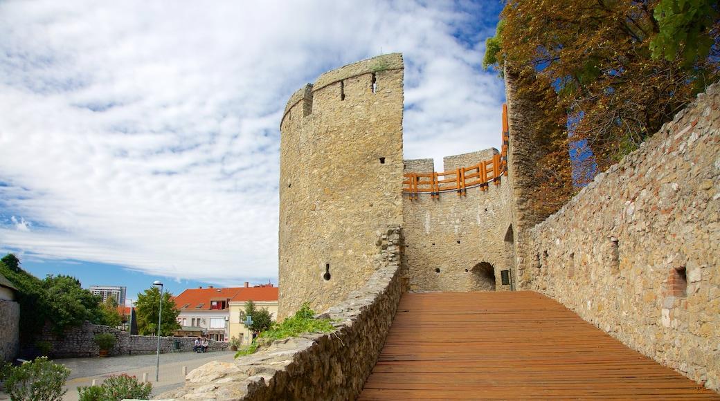 Pecs johon kuuluu linna ja perintökohteet