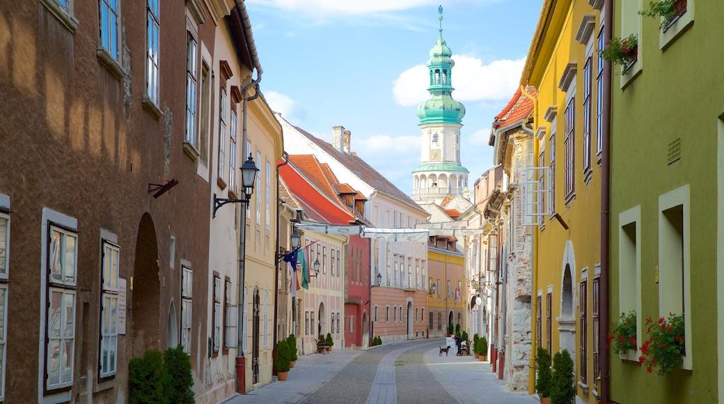 Torre de Vigia do Castelo de Buda mostrando cenas de rua, elementos de patrimônio e uma cidade