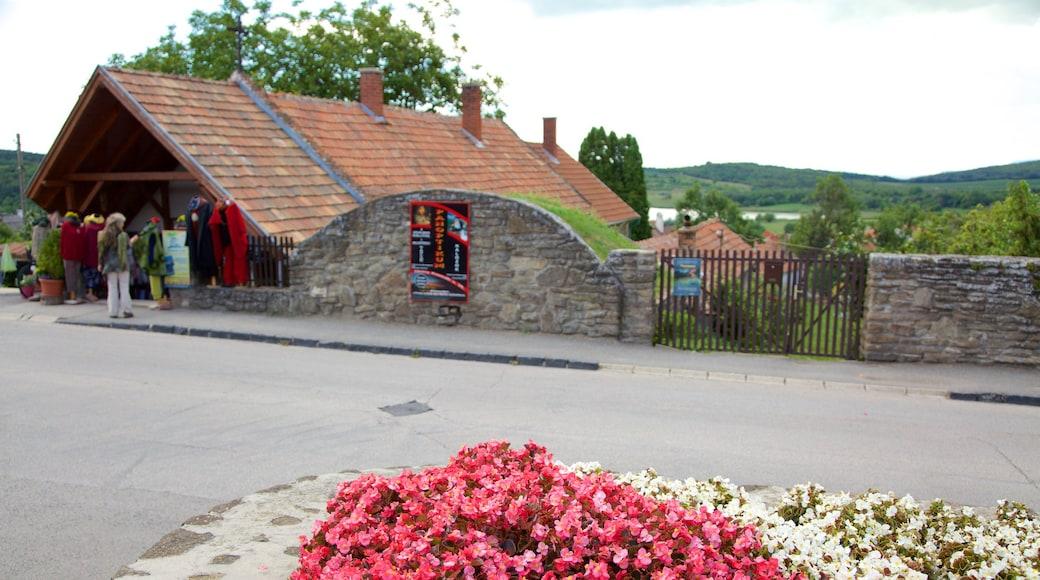 Tihany toont bloemen
