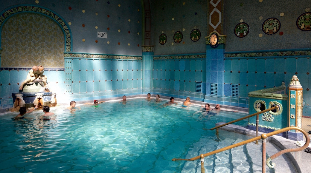 Gellert Thermal Baths and Swimming Pool which includes interior views, a day spa and a pool