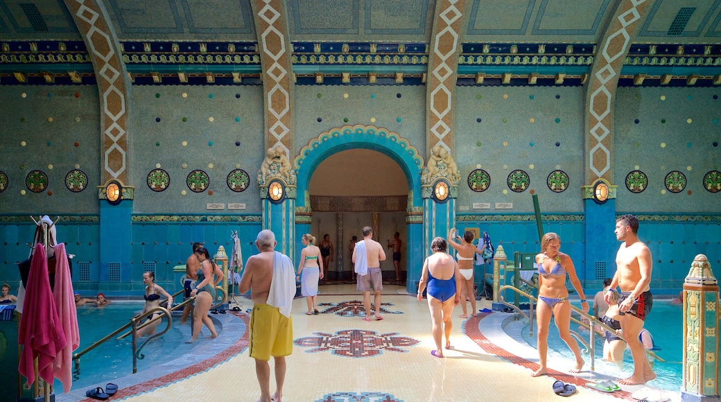 Gellert Thermal Baths and Swimming Pool which includes interior views, a pool and a day spa
