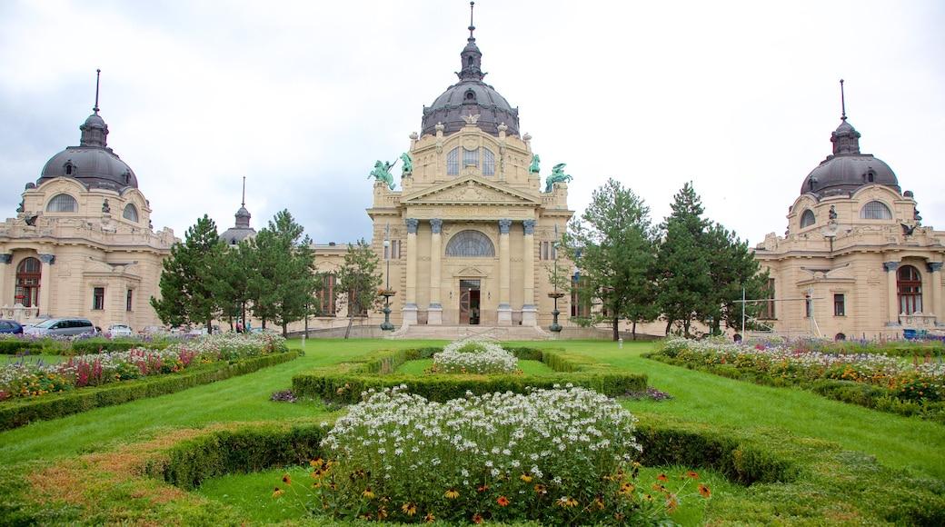 Széchenyi-Heilbad welches beinhaltet Wellness und Spa, Park und historische Architektur