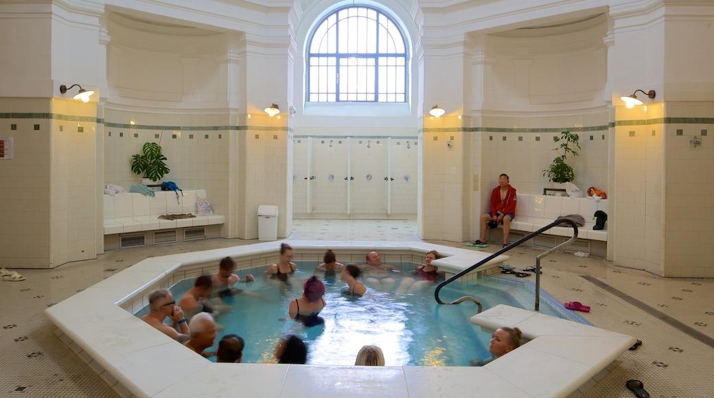 Széchenyi-Heilbad das einen Wellness und Spa und Innenansichten sowie große Menschengruppe