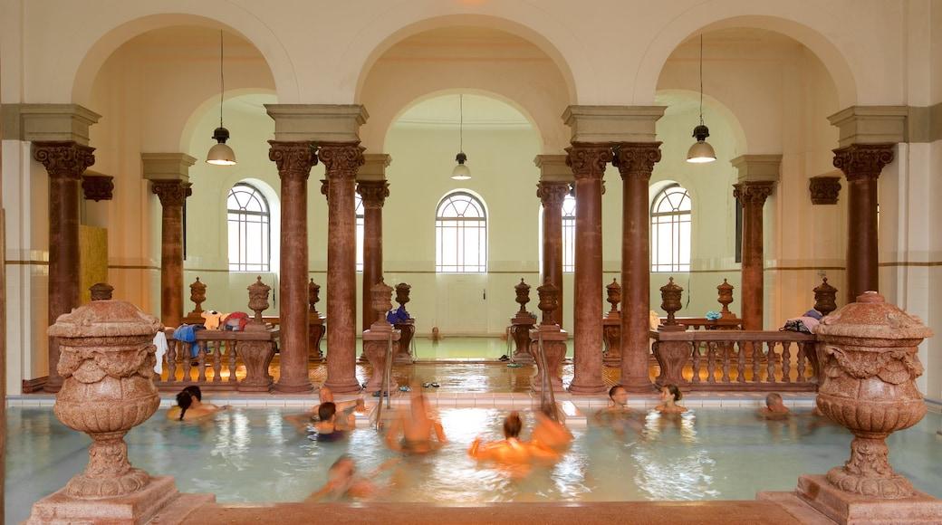 Széchenyi-Heilbad welches beinhaltet Wellness und Spa und Innenansichten sowie große Menschengruppe