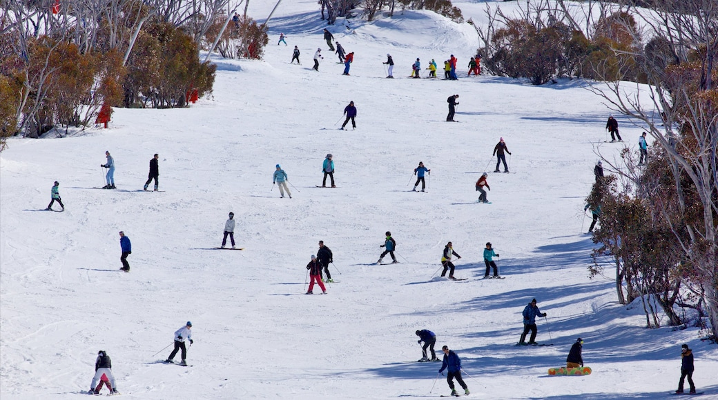Thredbo which includes mountains, snow and snowboarding
