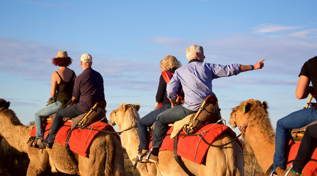 Uluru which includes desert views and horse riding as well as a small group of people