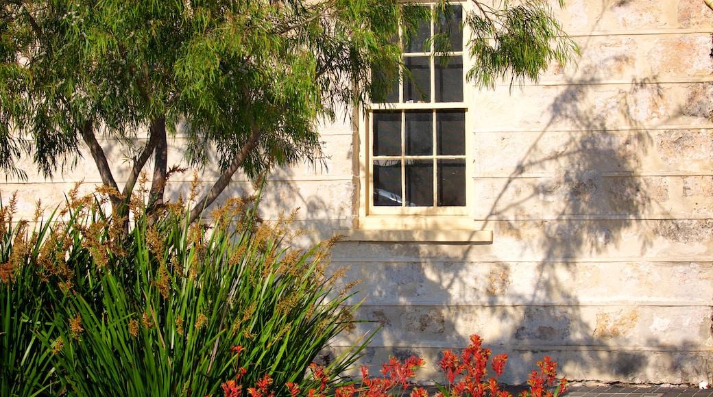 Busselton mettant en vedette maison et fleurs