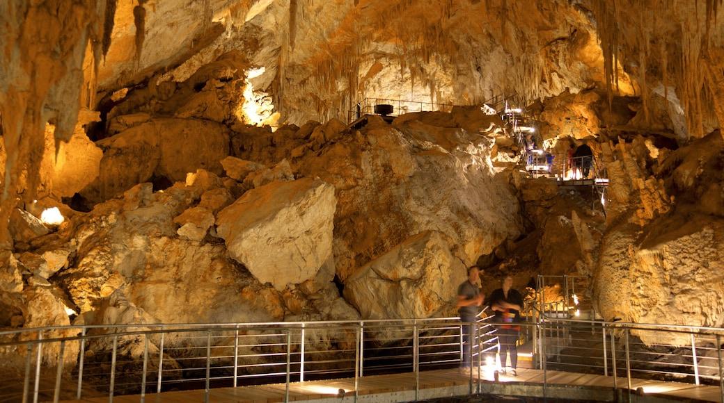 Mammutgrottan presenterar grottor såväl som ett par