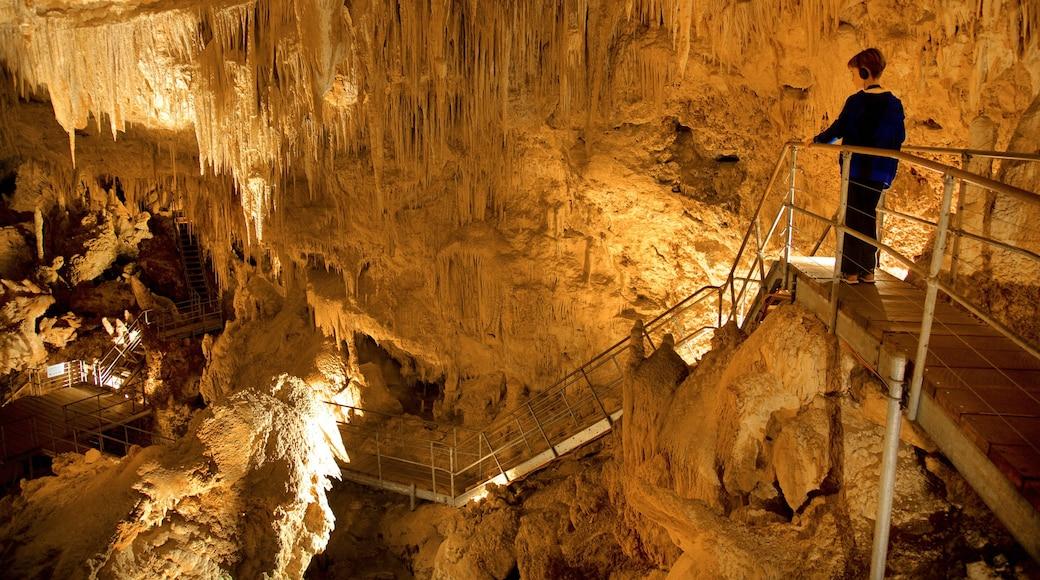 Mammutgrottan som inkluderar grottor såväl som ett barn