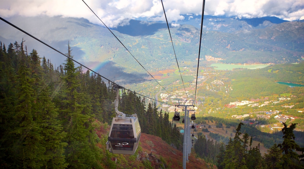 Whistler Blackcomb Ski Resort which includes forest scenes, mountains and a gondola