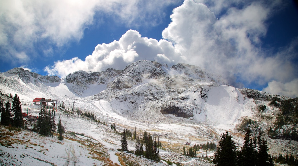 Whistler Blackcomb Ski Resort which includes mountains and snow