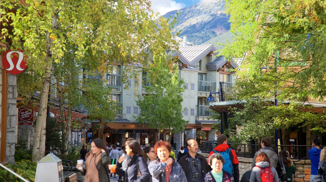 Whistler Blackcomb Ski Resort showing a luxury hotel or resort and a square or plaza as well as a small group of people