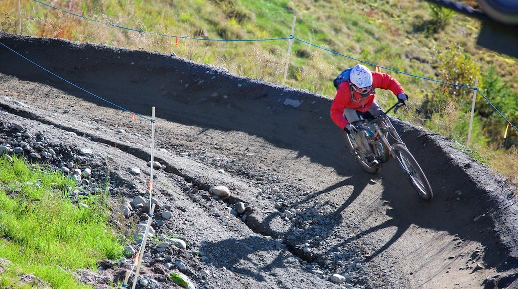 Whistler Blackcomb Ski Resort featuring mountain biking